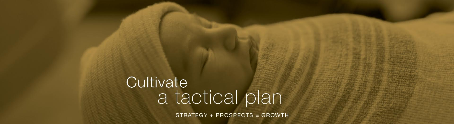 cultivate-a-tactical-plan